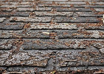 Countryside Roofing Images